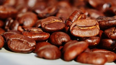 Corker v. Costco: A Complaint Brewing Over Kona Coffee
